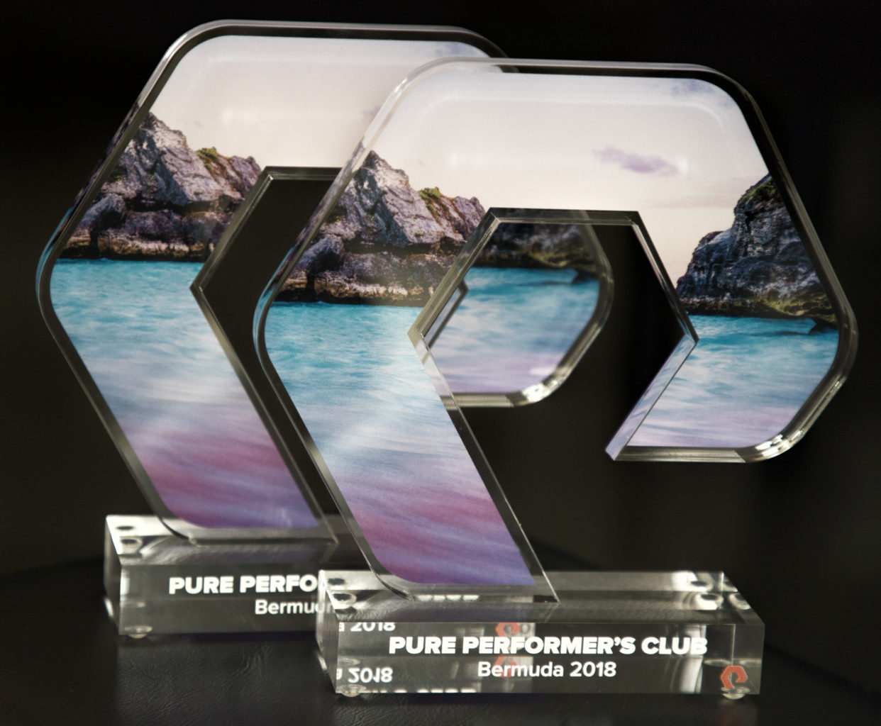 Packet Systems Indonesia confirmed to join an elite club of Pure Performance's Club